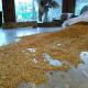 Sarı Buğday